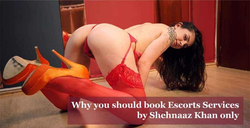 Why you should book Escorts Services by Shehnaaz Khan only
